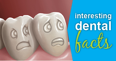 Did you know? Fun Facts About Dentistry From Your Modesto Dentist